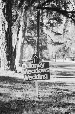 Meadow Wedding   October 2016